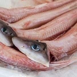 pescado muxina