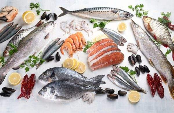 tipos de pescado